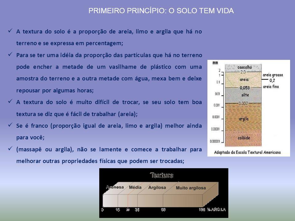 PRIMEIRO PRINCÍPIO: O SOLO TEM VIDA A textura do solo é a proporção de areia, limo e argila que há no terreno e se expressa em percentagem; Para se te