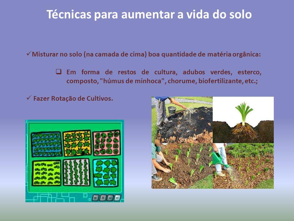Técnicas para aumentar a vida do solo Misturar no solo (na camada de cima) boa quantidade de matéria orgânica: Em forma de restos de cultura, adubos v
