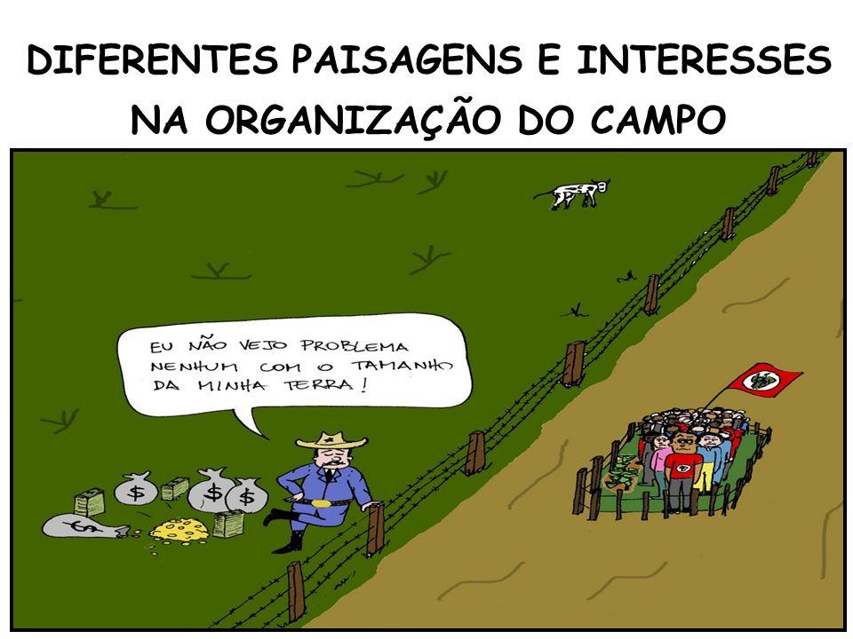 DIFERENTES PAISAGENS E INTERESSES NA ORGANIZAÇÃO DO CAMPO