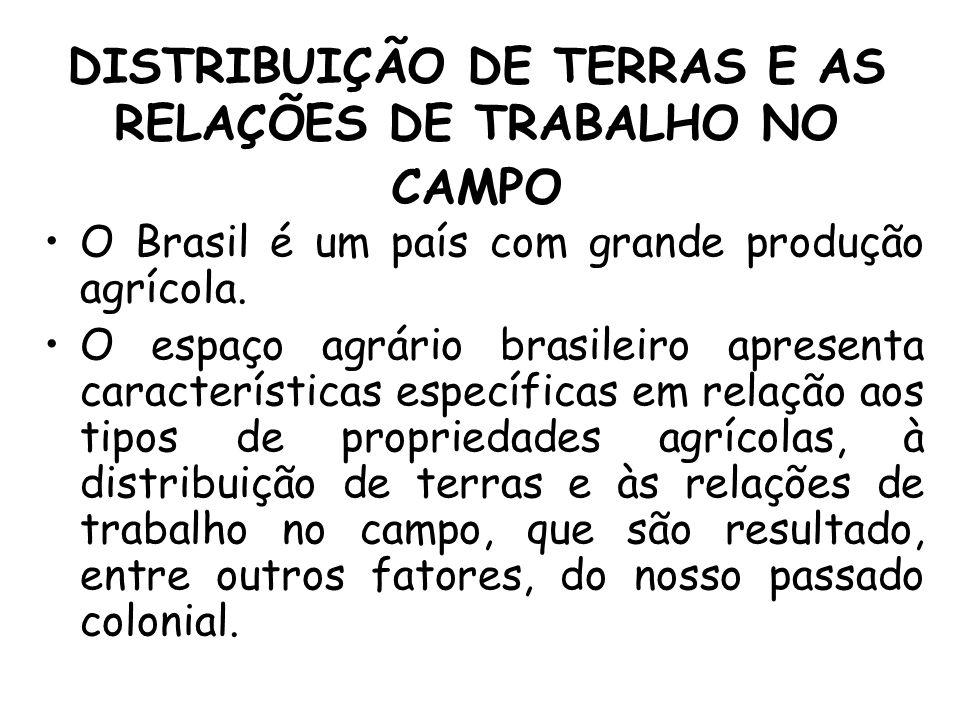 DISTRIBUIÇÃO DE TERRAS E AS RELAÇÕES DE TRABALHO NO CAMPO O Brasil é um país com grande produção agrícola. O espaço agrário brasileiro apresenta carac