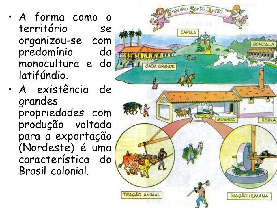 A forma como o território se organizou-se com predomínio da monocultura e do latifúndio. A existência de grandes propriedades com produção voltada par