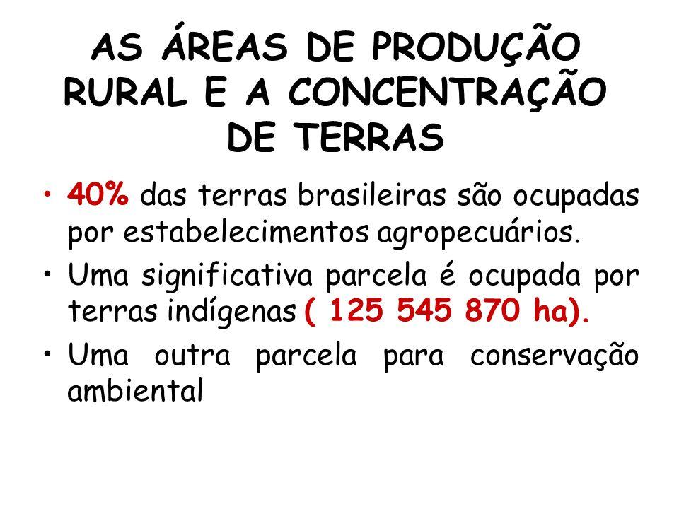 AS ÁREAS DE PRODUÇÃO RURAL E A CONCENTRAÇÃO DE TERRAS 40% das terras brasileiras são ocupadas por estabelecimentos agropecuários. Uma significativa pa