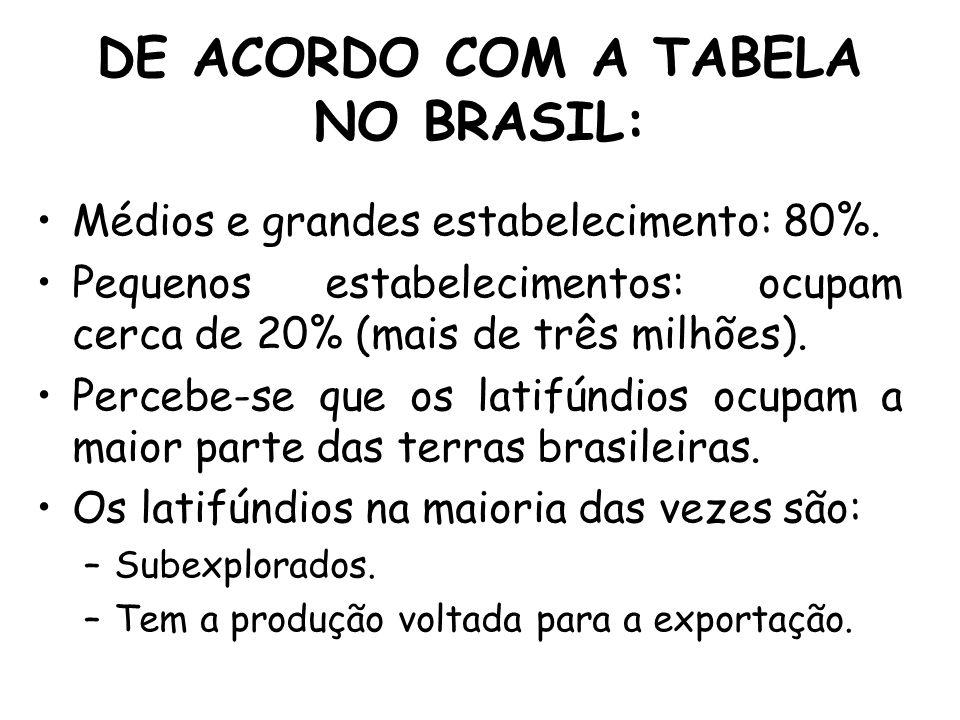 DE ACORDO COM A TABELA NO BRASIL: Médios e grandes estabelecimento: 80%. Pequenos estabelecimentos: ocupam cerca de 20% (mais de três milhões). Perceb
