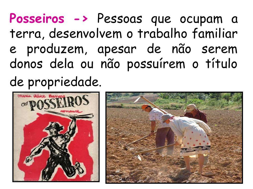 Posseiros -> Pessoas que ocupam a terra, desenvolvem o trabalho familiar e produzem, apesar de não serem donos dela ou não possuírem o título de propr