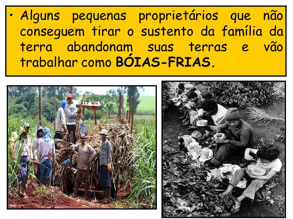 Alguns pequenas proprietários que não conseguem tirar o sustento da família da terra abandonam suas terras e vão trabalhar como BÓIAS-FRIAS.