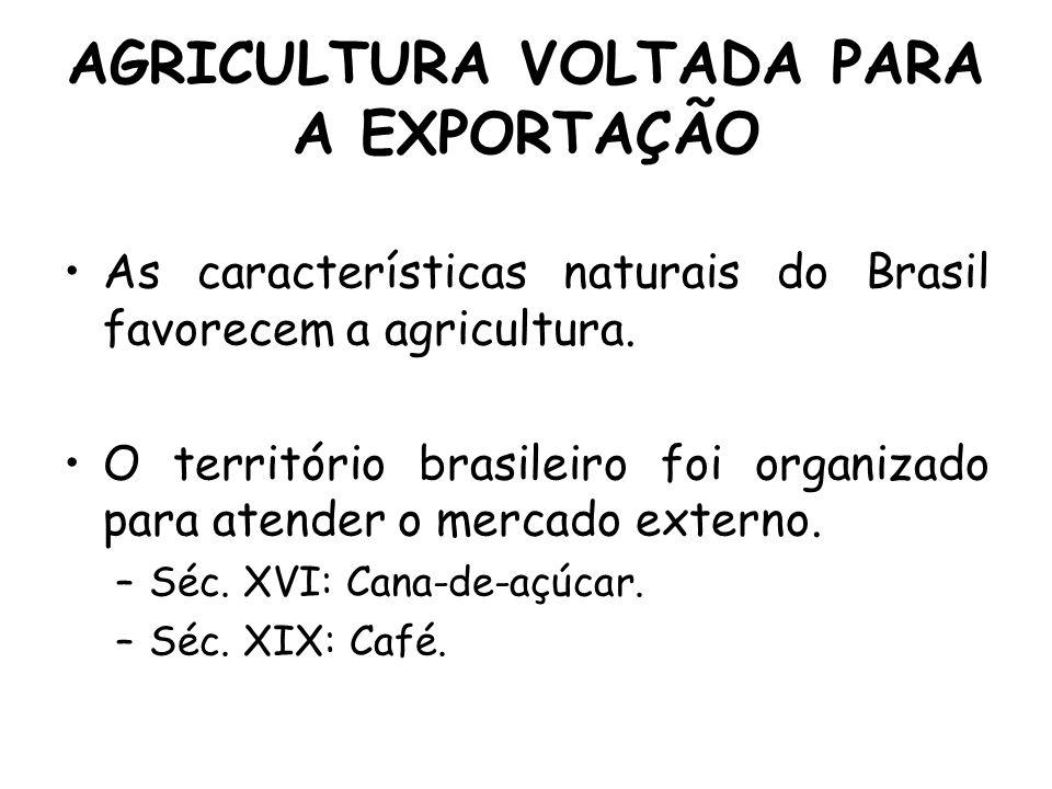 AGRICULTURA VOLTADA PARA A EXPORTAÇÃO As características naturais do Brasil favorecem a agricultura. O território brasileiro foi organizado para atend
