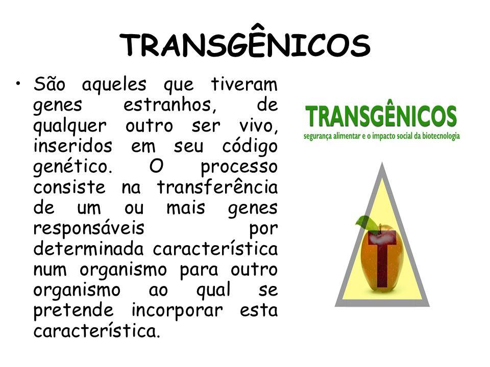 TRANSGÊNICOS São aqueles que tiveram genes estranhos, de qualquer outro ser vivo, inseridos em seu código genético. O processo consiste na transferênc