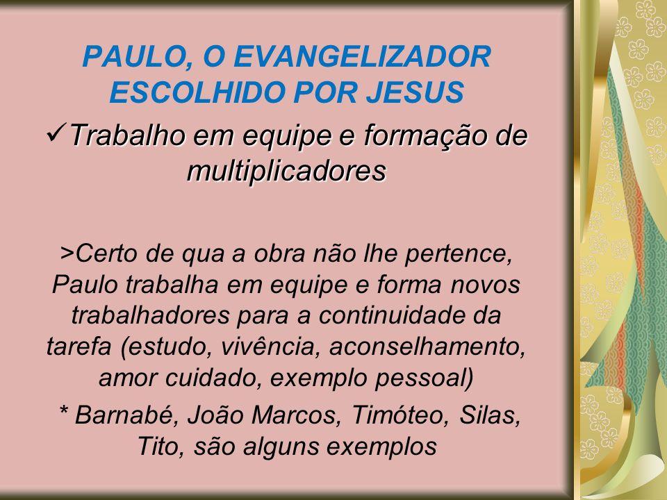 PAULO, O EVANGELIZADOR ESCOLHIDO POR JESUS Trabalho em equipe e formação de multiplicadores >Certo de qua a obra não lhe pertence, Paulo trabalha em e