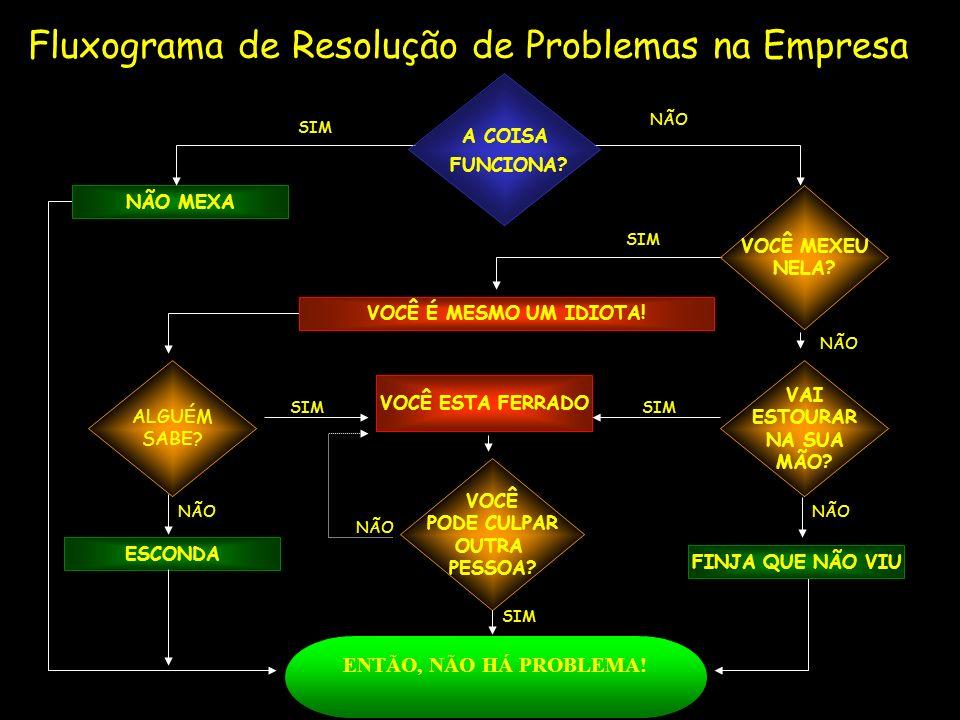 Fluxograma de Resolução de Problemas na Empresa NÃO MEXA SIM NÃO SIM VOCÊ É MESMO UM IDIOTA! NÃO VAI ESTOURAR NA SUA MÃO? NÃO FINJA QUE NÃO VIU ALGUÉM