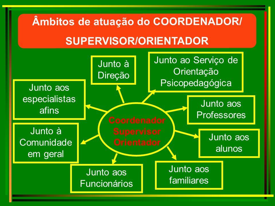 Atua como mediador e assessor no planejamento, acompanhamento, orientação e avaliação de processos educacionais.
