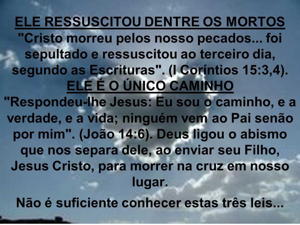 24 ELE RESSUSCITOU DENTRE OS MORTOS