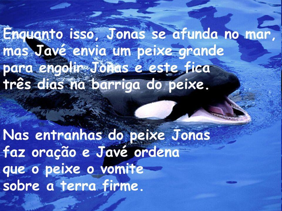 Enquanto isso, Jonas se afunda no mar, mas Javé envia um peixe grande para engolir Jonas e este fica três dias na barriga do peixe. Nas entranhas do p