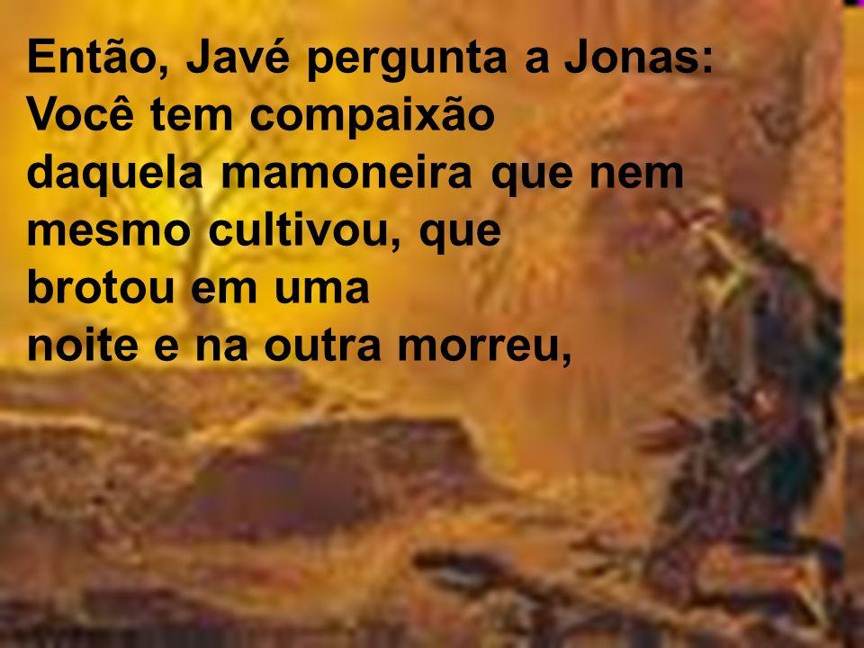 Então, Javé pergunta a Jonas: Você tem compaixão daquela mamoneira que nem mesmo cultivou, que brotou em uma noite e na outra morreu,