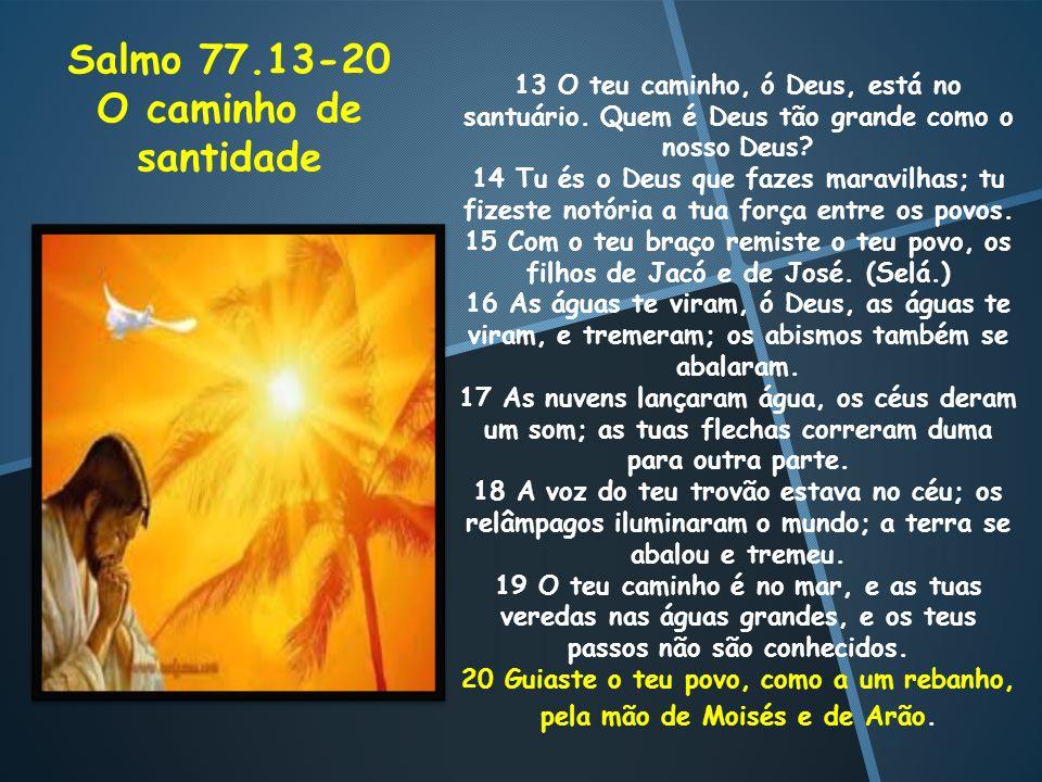 13 O teu caminho, ó Deus, está no santuário. Quem é Deus tão grande como o nosso Deus? 14 Tu és o Deus que fazes maravilhas; tu fizeste notória a tua