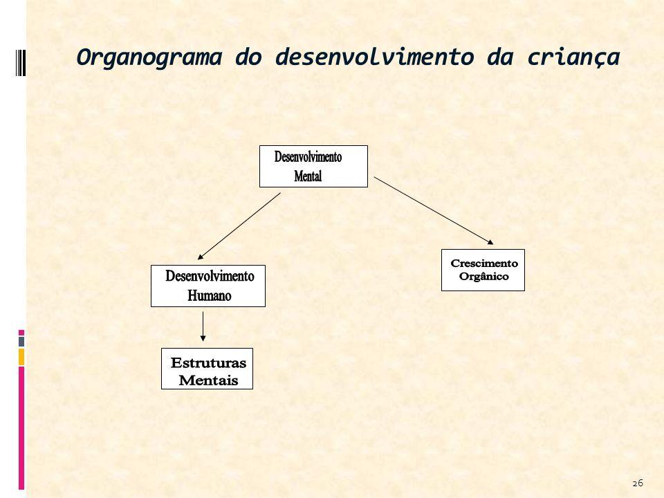 Organograma do desenvolvimento da criança 26