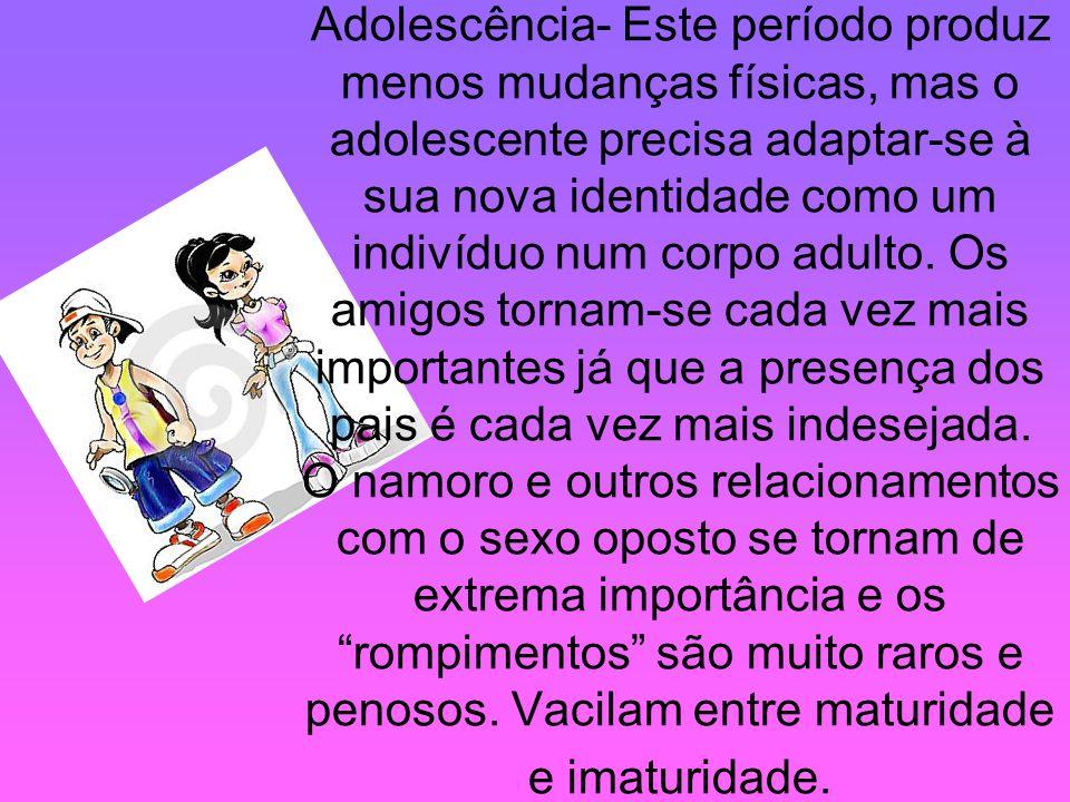Adolescência- Este período produz menos mudanças físicas, mas o adolescente precisa adaptar-se à sua nova identidade como um indivíduo num corpo adult