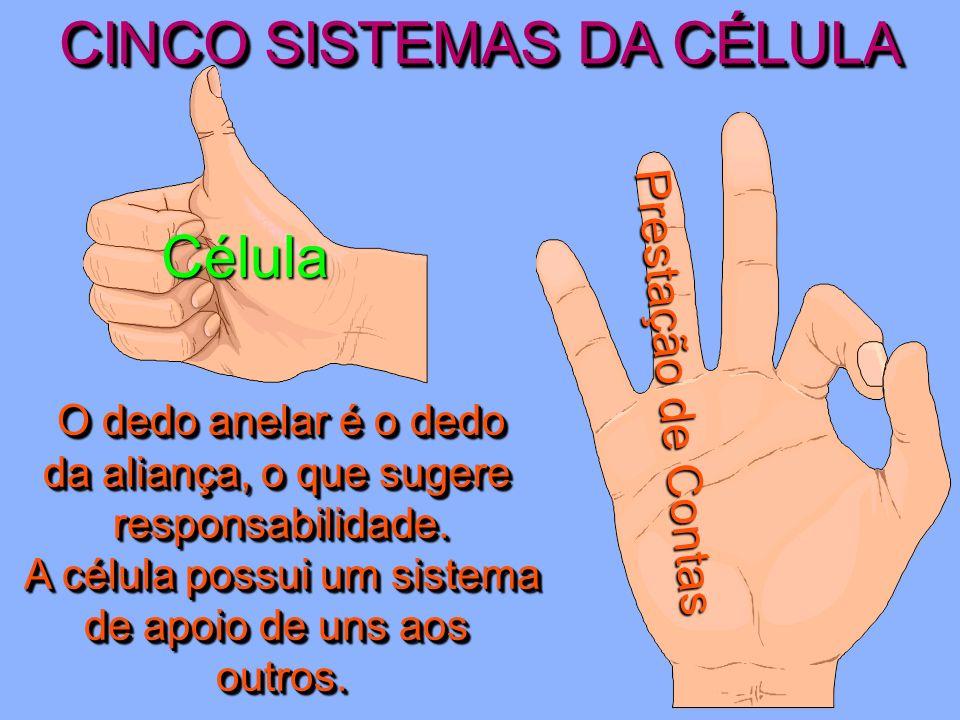 CINCO SISTEMAS DA CÉLULA Célula Liderança O dedo do meio é o maior.