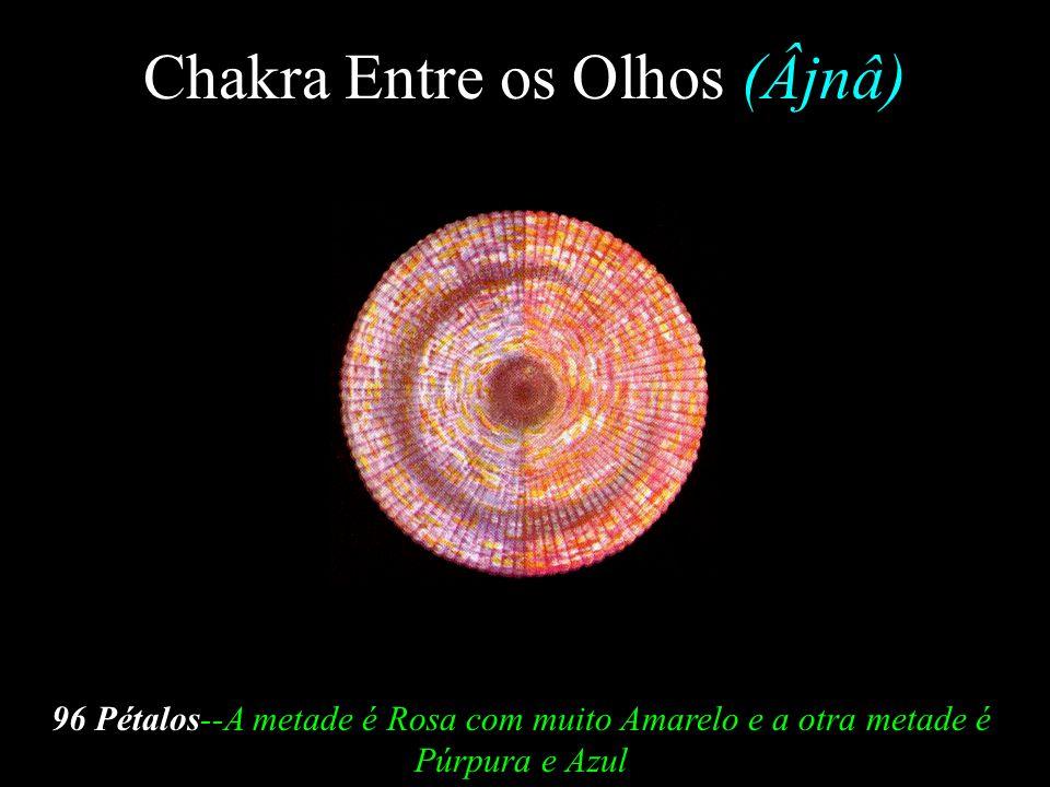 Chakra da Garganta (Vishuddha) 16 Pétalos-- Recebe a Vitalidade Violeta e Azul do Chakra Esplênico