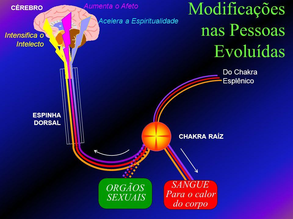 A Aura Saudavel (Etérica) O exceso de Prâna irradia pelos poros