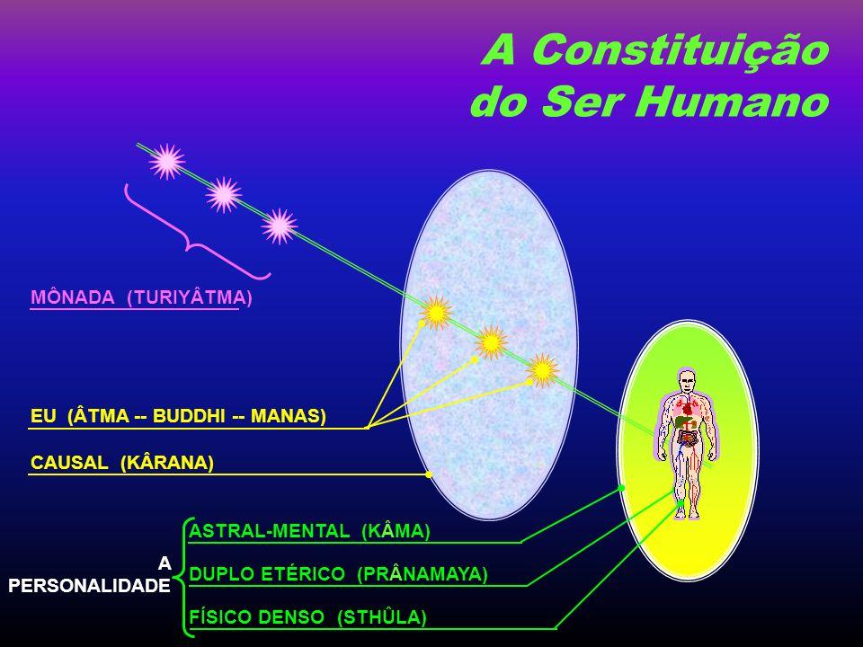 FÍSICO DENSO (STHÛLA) DUPLO ETÉRICO (PRÂNAMAYA) ASTRAL-MENTAL (KÂMA) CAUSAL (KÂRANA) EU (ÂTMA -- BUDDHI -- MANAS) A PERSONALIDADE A Constituição do Ser Humano MÔNADA (TURIYÂTMA)