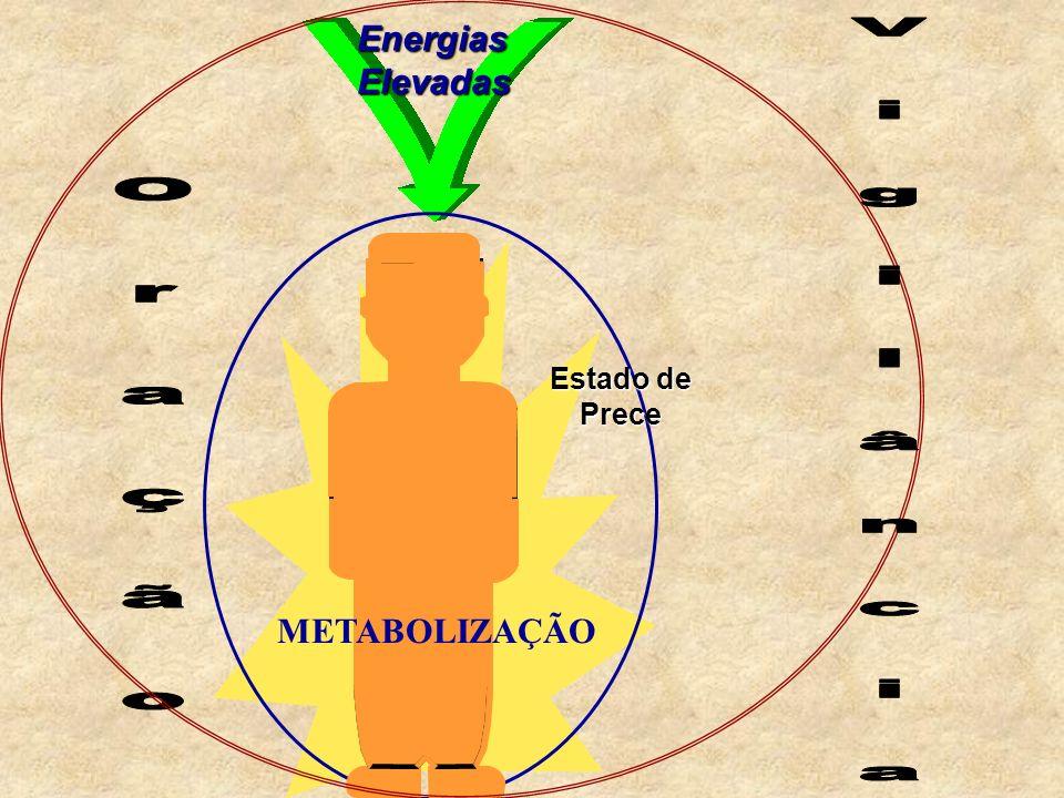 Energias Elevadas Estado de Prece METABOLIZAÇÃO