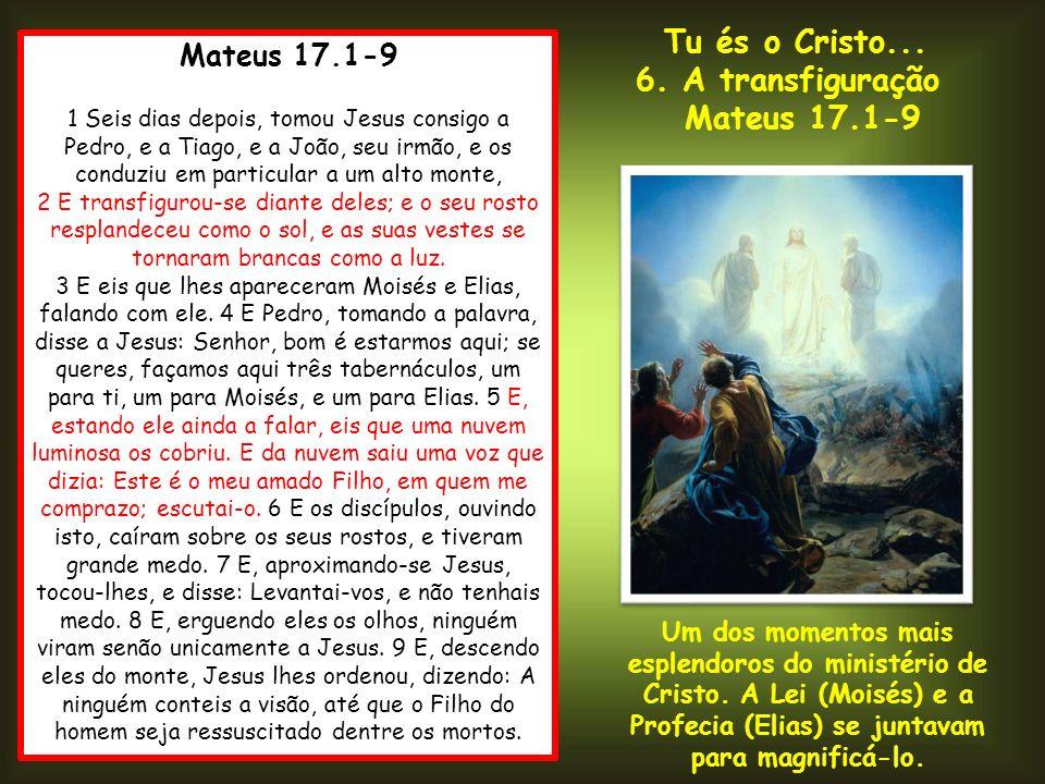 Mateus 17.1-9 1 Seis dias depois, tomou Jesus consigo a Pedro, e a Tiago, e a João, seu irmão, e os conduziu em particular a um alto monte, 2 E transf