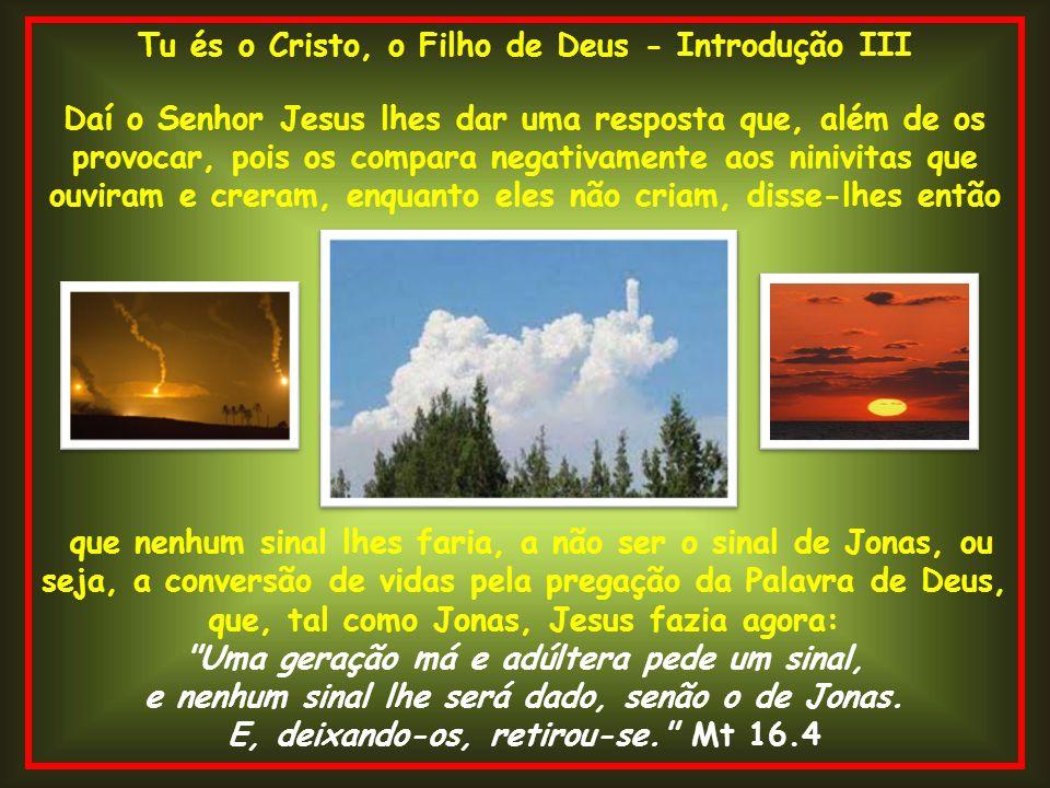 Tu és o Cristo, o Filho de Deus - Introdução III Daí o Senhor Jesus lhes dar uma resposta que, além de os provocar, pois os compara negativamente aos