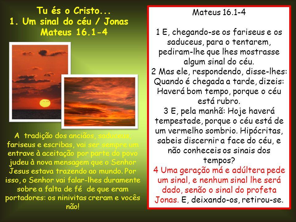 Mateus 16.1-4 1 E, chegando-se os fariseus e os saduceus, para o tentarem, pediram-lhe que lhes mostrasse algum sinal do céu. 2 Mas ele, respondendo,