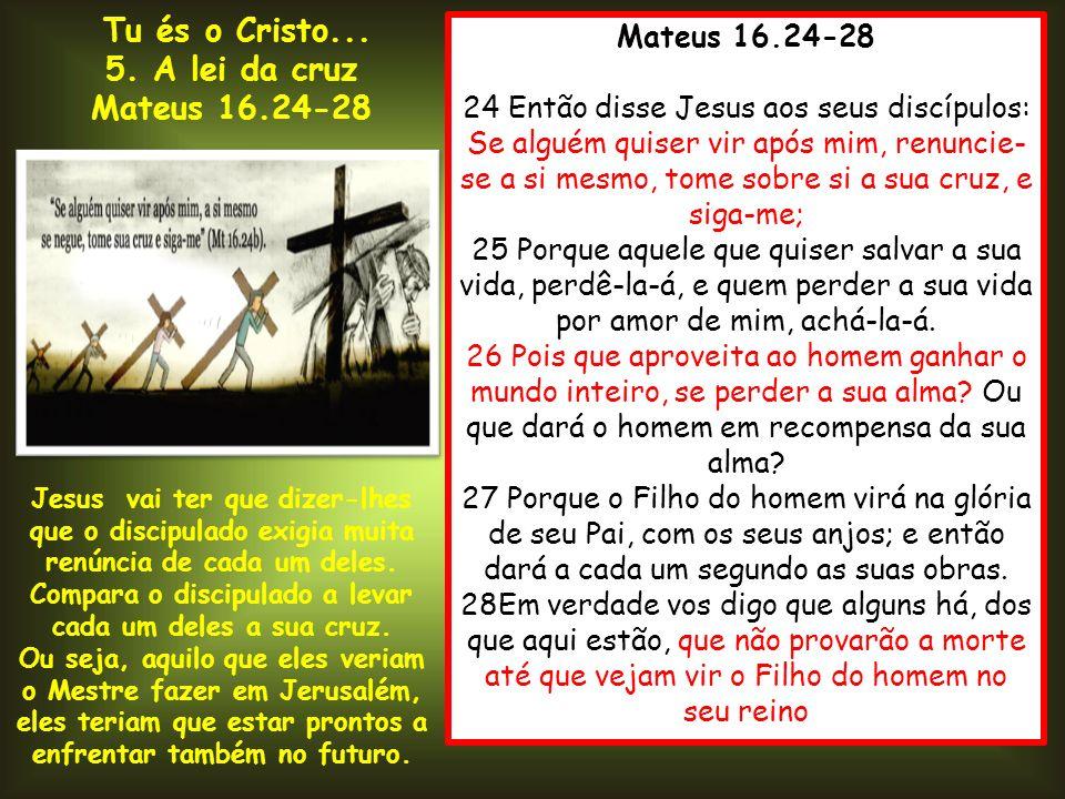 Mateus 16.24-28 24 Então disse Jesus aos seus discípulos: Se alguém quiser vir após mim, renuncie- se a si mesmo, tome sobre si a sua cruz, e siga-me;
