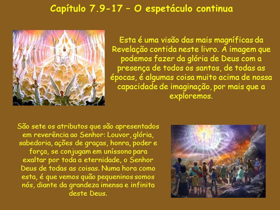 Capítulo 7.9-17 – O espetáculo continua Esta é uma visão das mais magníficas da Revelação contida neste livro. A imagem que podemos fazer da glória de