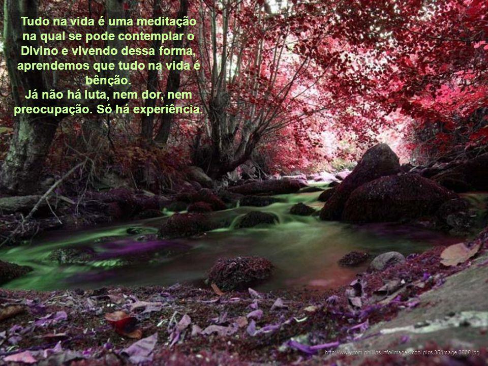 Tudo na vida é uma meditação na qual se pode contemplar o Divino e vivendo dessa forma, aprendemos que tudo na vida é bênção.