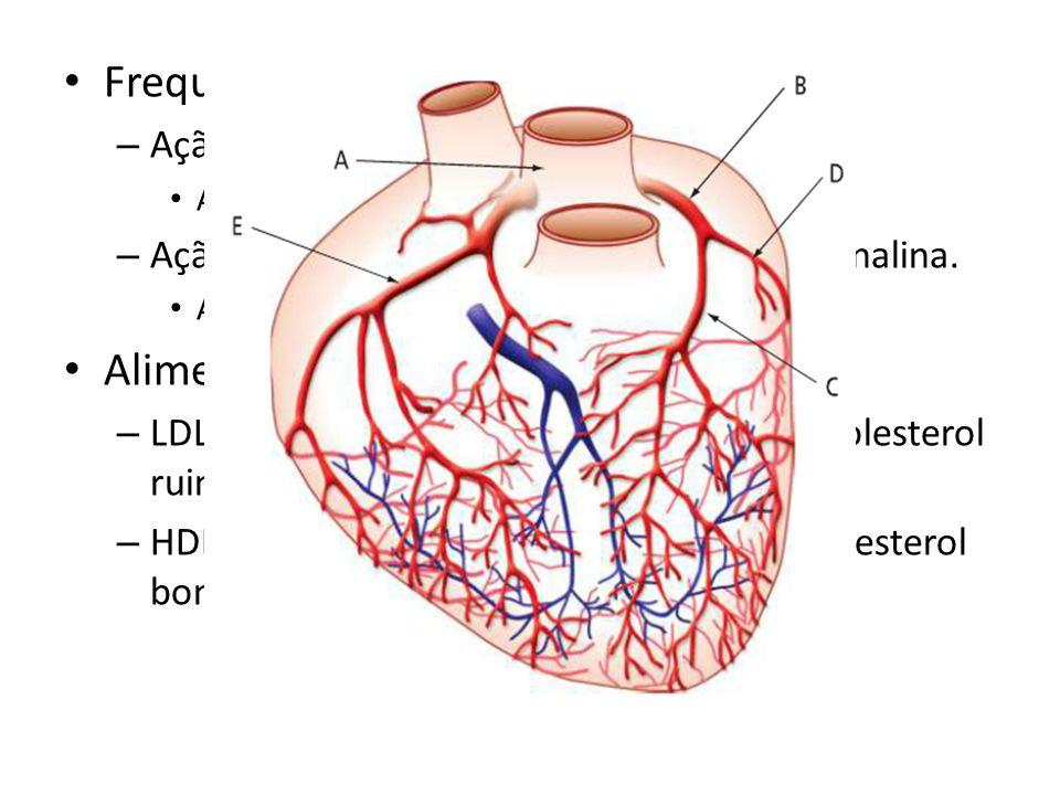 Frequência cardíaca: – Ação do sistema nervos. Atividade física – Ação dos hormônios adrenalina e noradrenalina. Ansiedade, aflição, nervosismo, susto