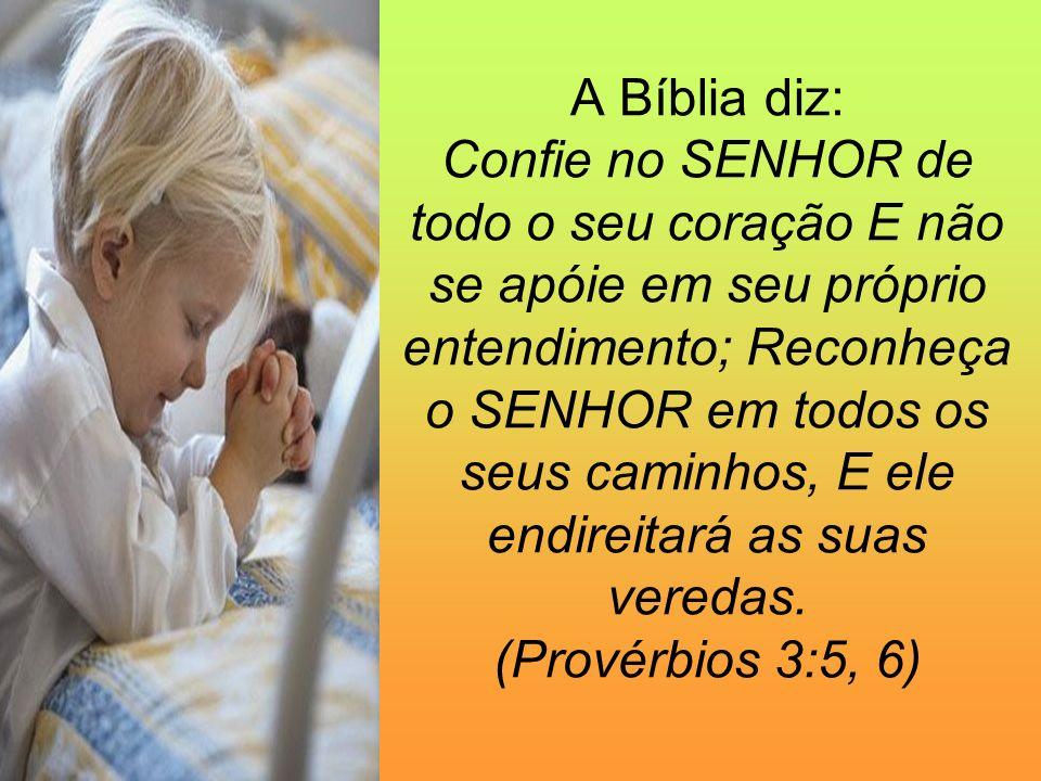 A Bíblia diz: Confie no SENHOR de todo o seu coração E não se apóie em seu próprio entendimento; Reconheça o SENHOR em todos os seus caminhos, E ele e