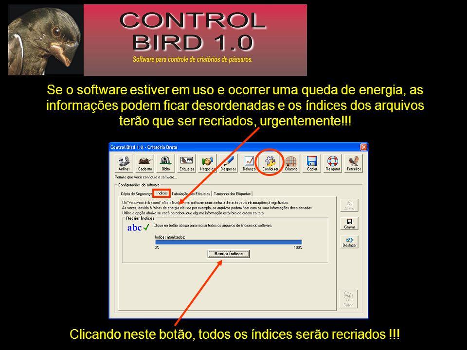 Se o software estiver em uso e ocorrer uma queda de energia, as informações podem ficar desordenadas e os índices dos arquivos terão que ser recriados