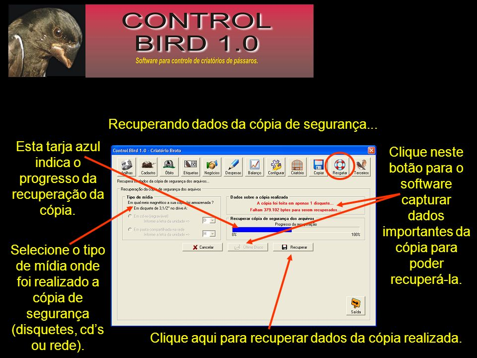 Recuperando dados da cópia de segurança... Selecione o tipo de mídia onde foi realizado a cópia de segurança (disquetes, cds ou rede). Clique neste bo
