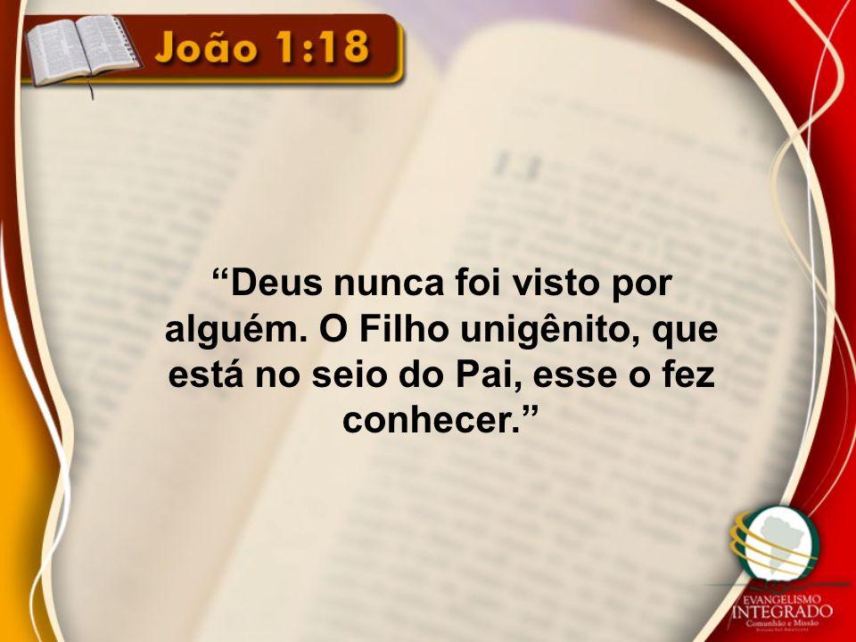 Deus nunca foi visto por alguém. O Filho unigênito, que está no seio do Pai, esse o fez conhecer.