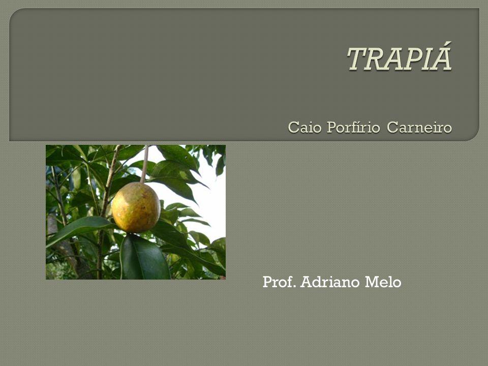 Trapiá: cruzamento dos caminhos da Vila do Coité ao Serrote do Machado e da Fazenda Taimbé aos cafundós do sertão.