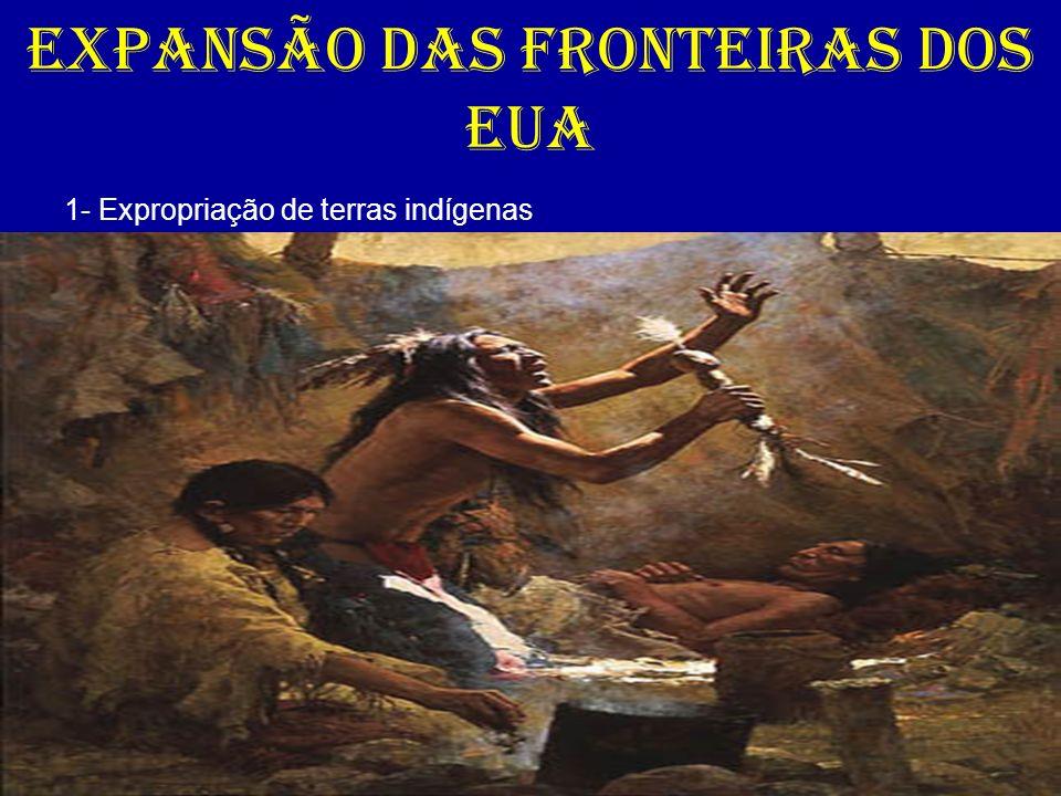 EXPANSÃO DAS FRONTEIRAS DOS EUA 1- Expropriação de terras indígenas