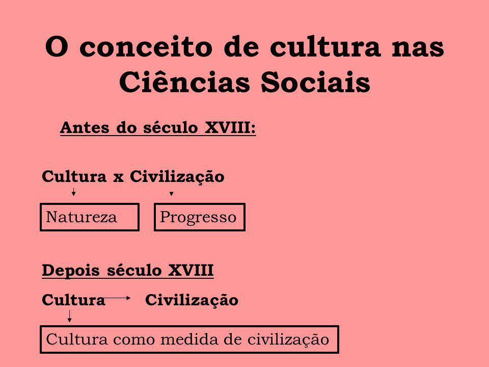 O conceito de cultura nas Ciências Sociais Antes do século XVIII: Cultura x Civilização NaturezaProgresso Depois século XVIII Cultura Civilização Cult