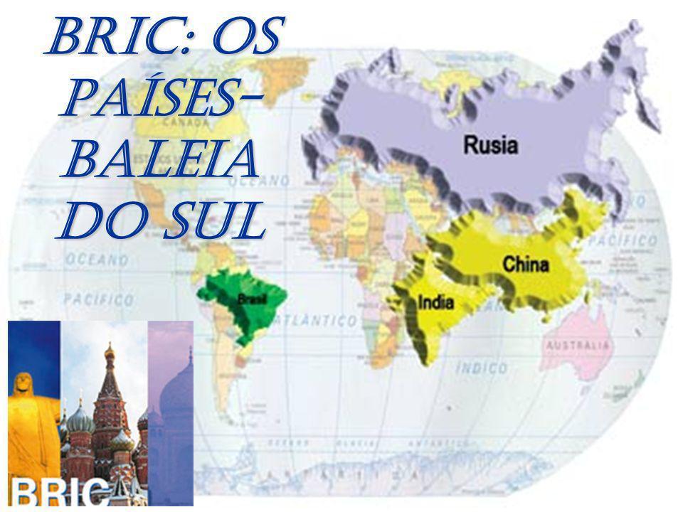 BRIC: OS PAÍSES- BALEIA DO SUL