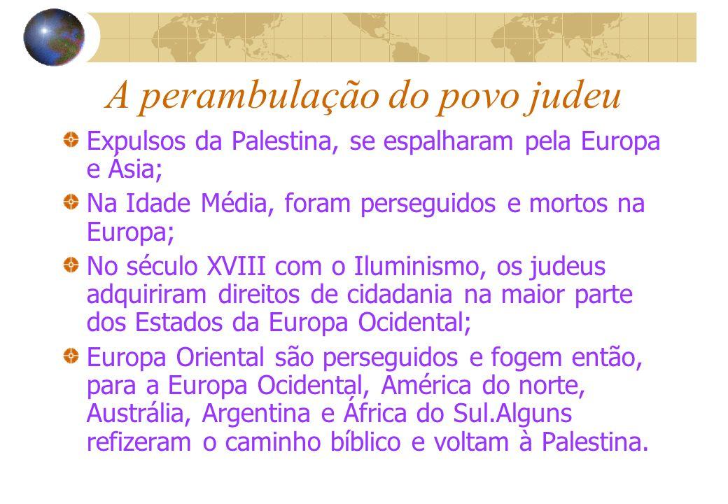 A perambulação do povo judeu Expulsos da Palestina, se espalharam pela Europa e Ásia; Na Idade Média, foram perseguidos e mortos na Europa; No século