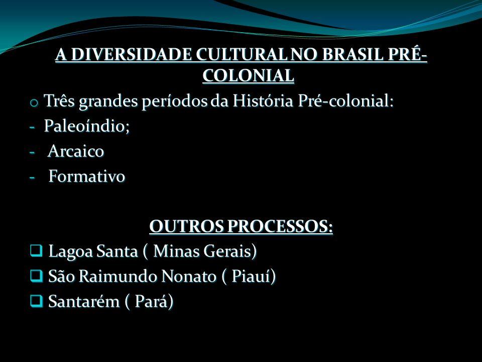 A DIVERSIDADE CULTURAL NO BRASIL PRÉ- COLONIAL o Três grandes períodos da História Pré-colonial: - Paleoíndio; - Arcaico - Formativo OUTROS PROCESSOS: