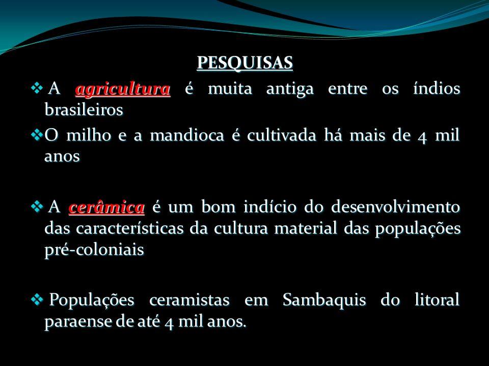 PESQUISAS A agricultura é muita antiga entre os índios brasileiros O milho e a mandioca é cultivada há mais de 4 mil anos O milho e a mandioca é culti