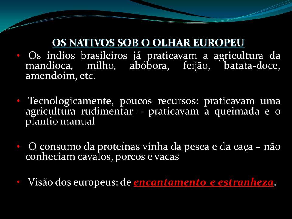 OS NATIVOS SOB O OLHAR EUROPEU Os índios brasileiros já praticavam a agricultura da mandioca, milho, abóbora, feijão, batata-doce, amendoim, etc. Tecn