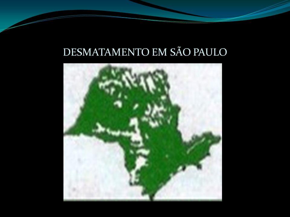DESMATAMENTO EM SÃO PAULO
