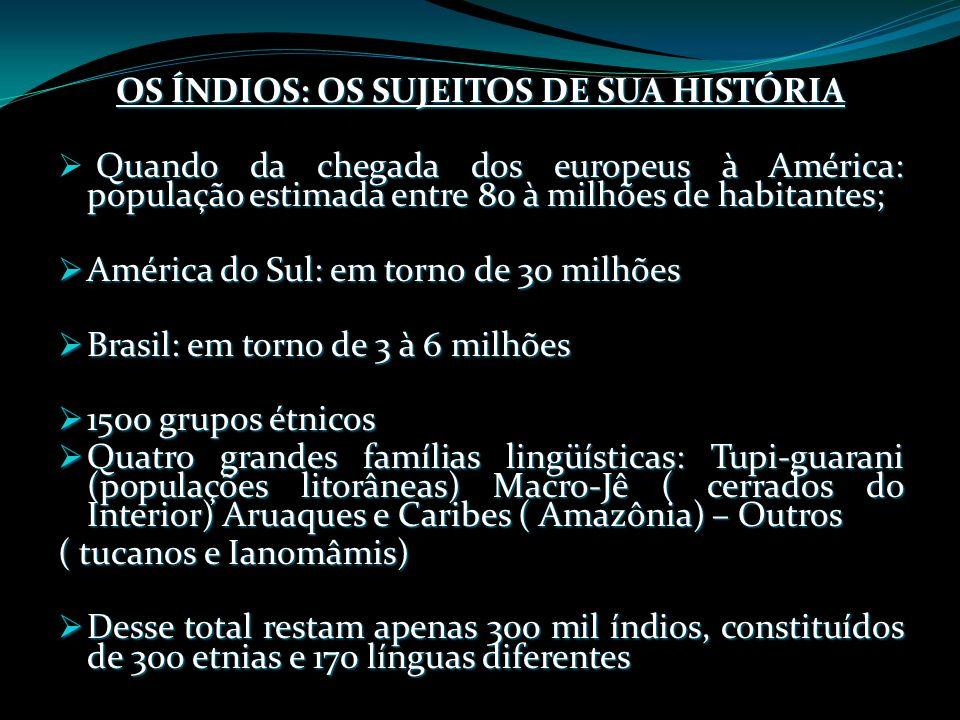 OS ÍNDIOS: OS SUJEITOS DE SUA HISTÓRIA Quando da chegada dos europeus à América: população estimada entre 80 à milhões de habitantes; América do Sul: