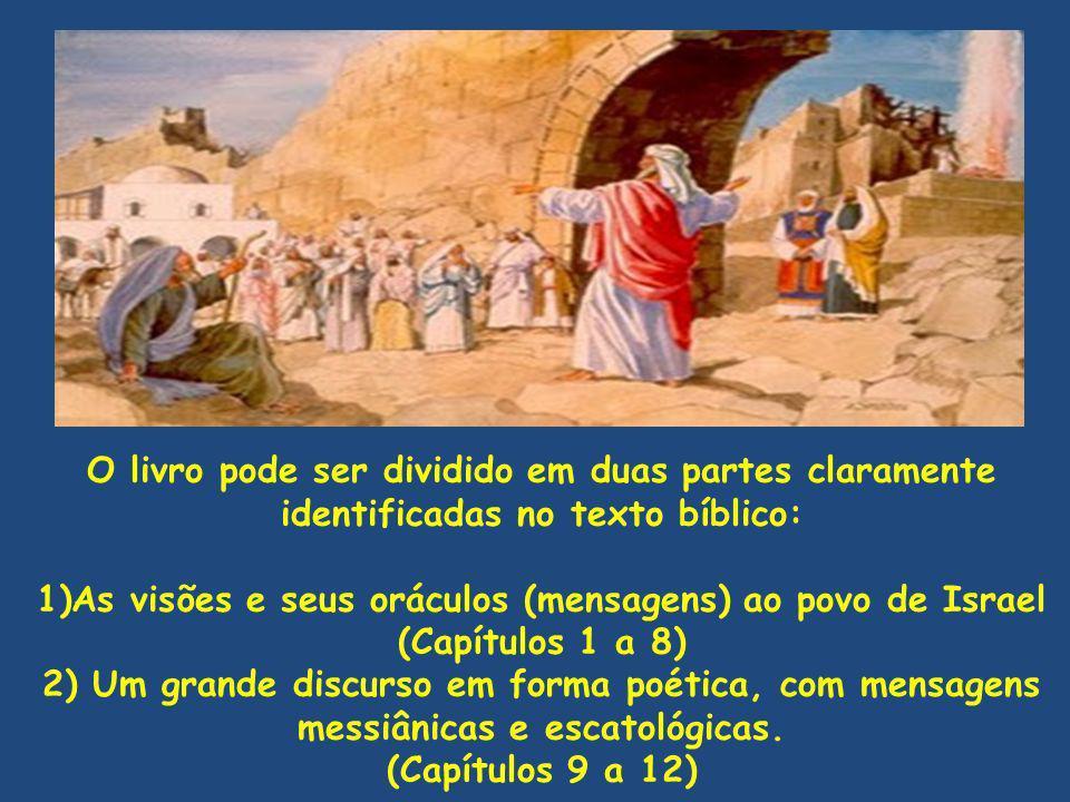O livro pode ser dividido em duas partes claramente identificadas no texto bíblico: 1)As visões e seus oráculos (mensagens) ao povo de Israel (Capítul