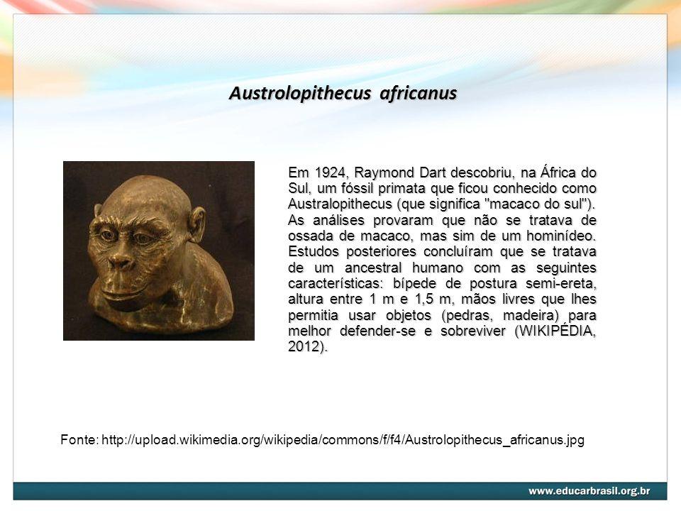 Austrolopithecus africanus Fonte: http://upload.wikimedia.org/wikipedia/commons/f/f4/Austrolopithecus_africanus.jpg Em 1924, Raymond Dart descobriu, na África do Sul, um fóssil primata que ficou conhecido como Australopithecus (que significa macaco do sul ).