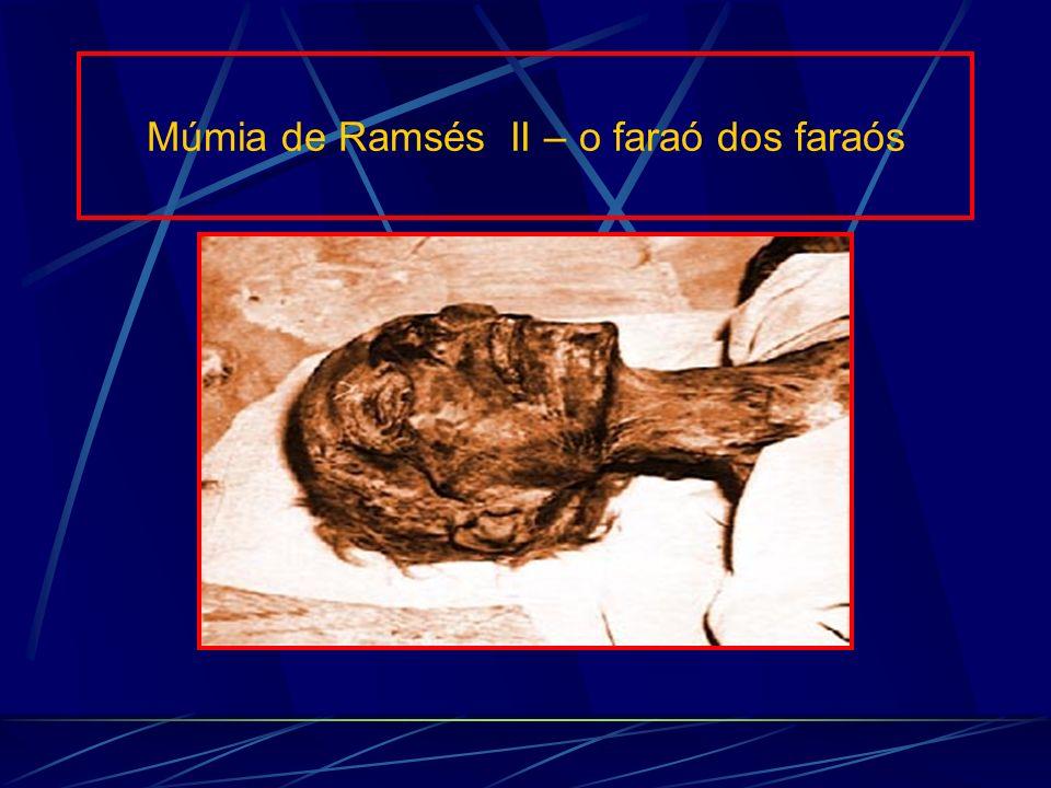Múmia de Ramsés II – o faraó dos faraós