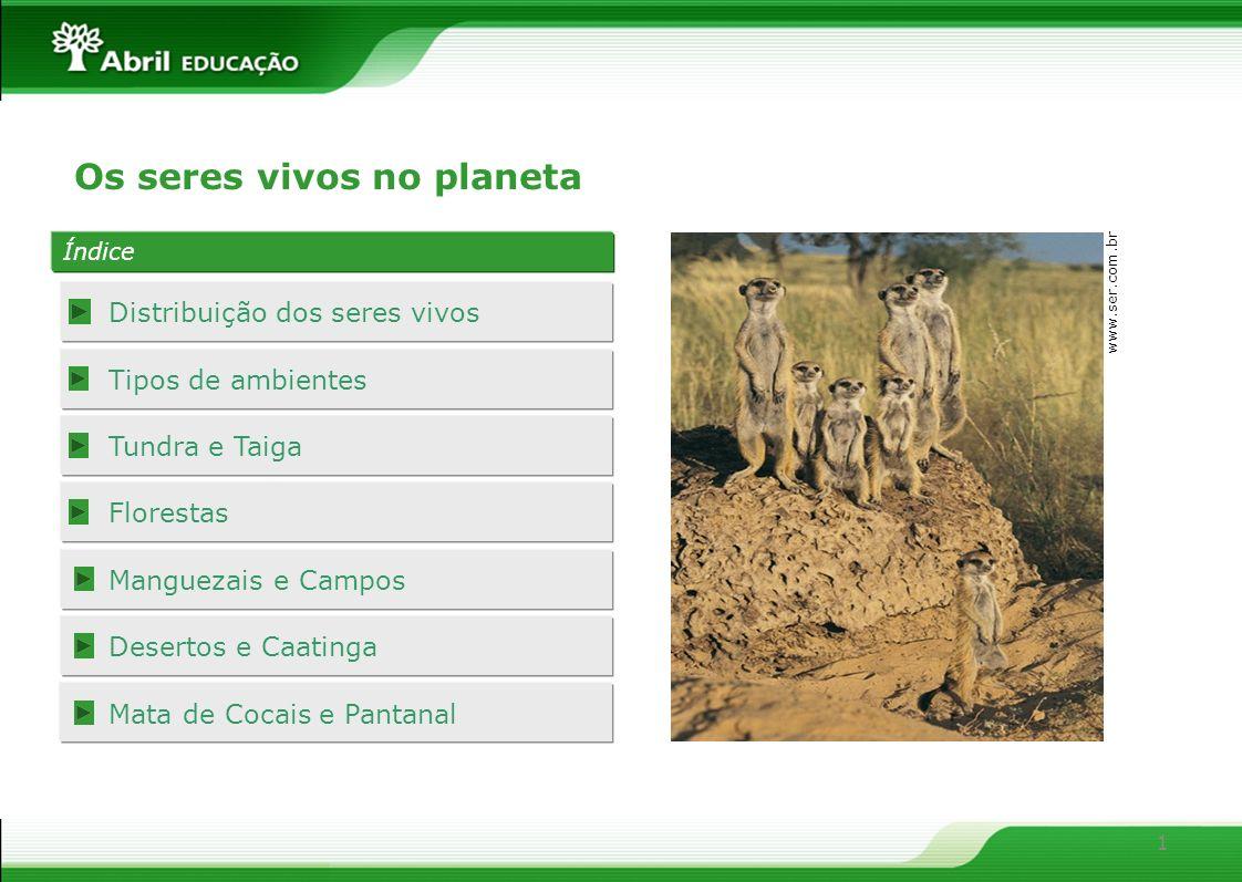 1 Índice Distribuição dos seres vivos Tipos de ambientes Tundra e Taiga Florestas Manguezais e Campos Desertos e Caatinga Mata de Cocais e Pantanal Os